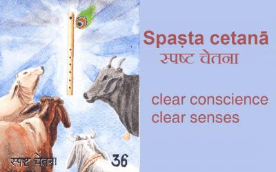 Spaṣta cetanā / spaṣta dhvani